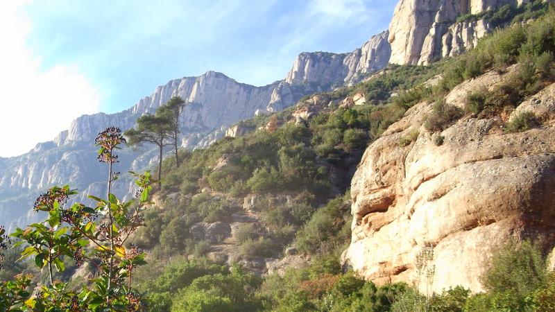 Auf dem Cami del Aigua nach Montserrat